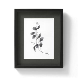 Lynsey Dorman Botanic Detail V Small Wall Art (26x32cm)