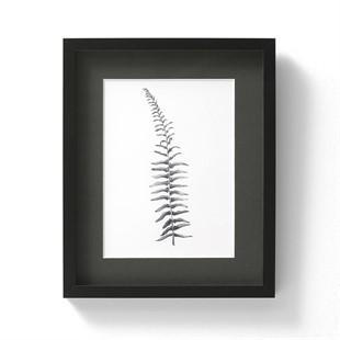 Lynsey Dorman Botanic Detail VI Small Wall Art (26x32cm)