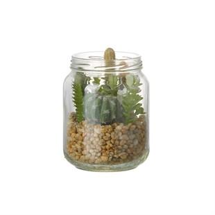 Succulent Mix In Jar H130X95MM Glass Green