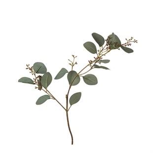 Eucalyptus Leaves Spray 60cm
