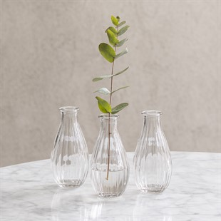 Clear Small Vase - Set of 3