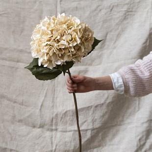Antique Cream Hydrangea Stem