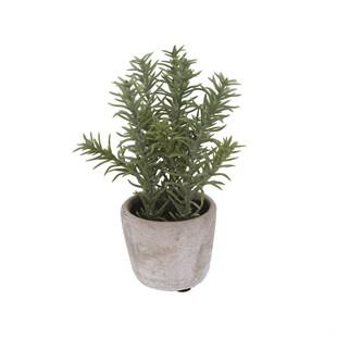 Faux Rosemary In Mini Stone Effect Pot
