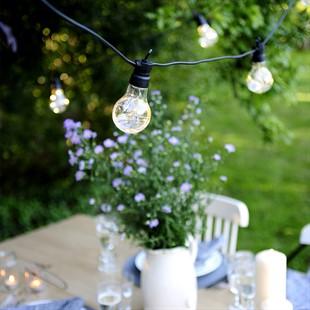 Festoon Classic Lights 20 Bulbs
